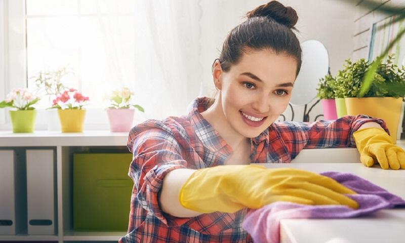prestations tarifs clarestia home services service la personne aide domicile femme de. Black Bedroom Furniture Sets. Home Design Ideas
